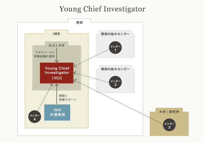 Young Chief Investigator説明図